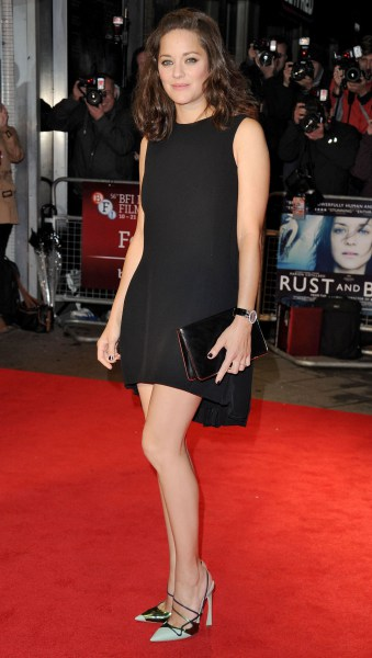 56th BFI London Film Festival - 'Rust And Bone' Premiere