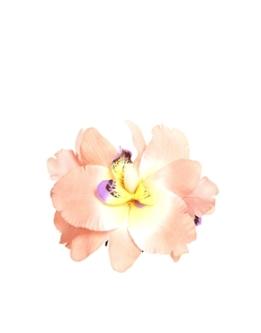 elblogdeanasuero_Tocados de flores_Asos peineta
