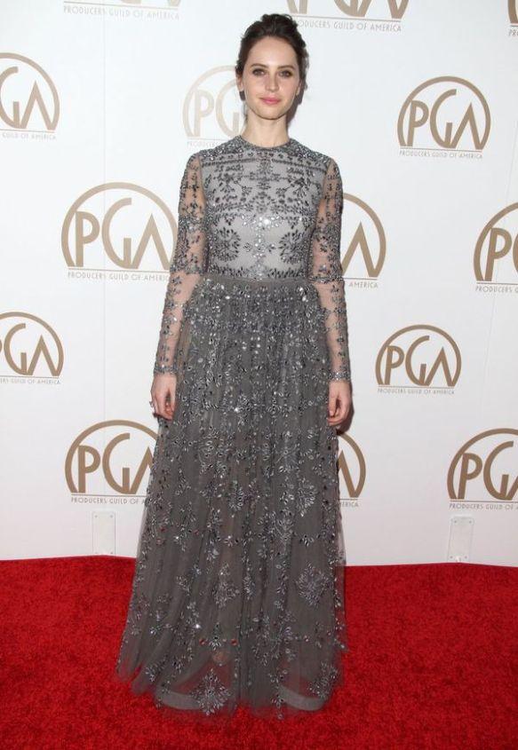 elblogdeanasuero-El estilo de Felicity Jones-Valentino vestido largo joya con transparencias gris